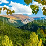 Rocky-Mountains-Fall-Trees