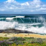 Wind_An-Sea-San-Diego-Surf-Surfer-Kook-Beach-Wave