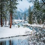 Winter-Stream-Christmas-Washington-Snow-White